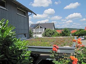 Grüne Dachlandschaften