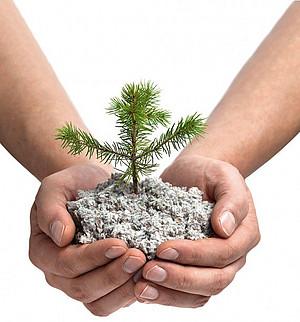 Ökologischer Dämmstoff